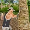 Survival Island Warrior Escape