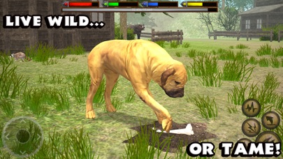 Ultimate Dog Simulator screenshot 3