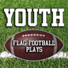 The Flag Football Playbook - Youth Flag Football Plays アートワーク
