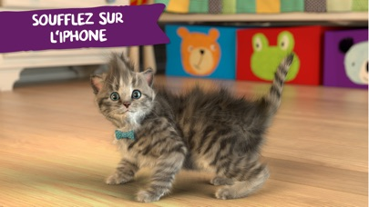 download Little Kitten apps 2