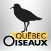 Magazine QuébecOiseaux