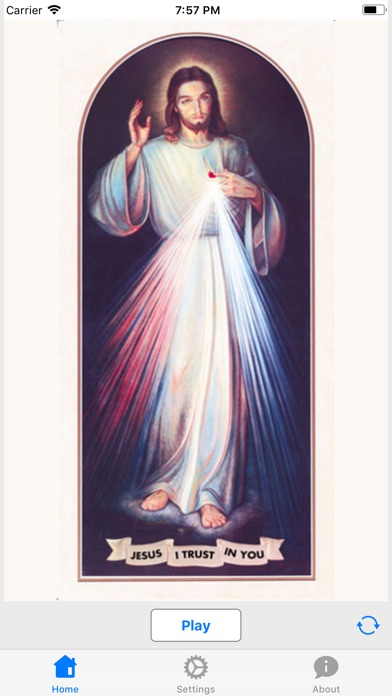 Chaplet of Divine Mercy Audio screenshot 2