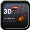 3D Reproductive System