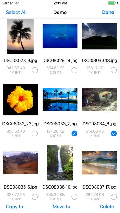 FileExplorer Pro: Fil... screenshot1