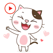 Animated Emoticat Stickers app review