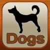 1,337 Dog Breeds,Veterinary