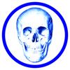 Anatomie Quiz Premium