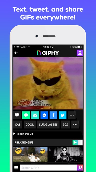 download GIPHY: The GIF Search Engine apps 2