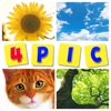 Guess The Word : 4 Pics Quiz