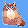 Жирный Кот STiK Sticker Pack