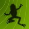 Ancient Frog