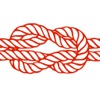 Animated Knots: How to Tie