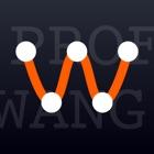 Prof.Wang — 您的专属云顾问 icon