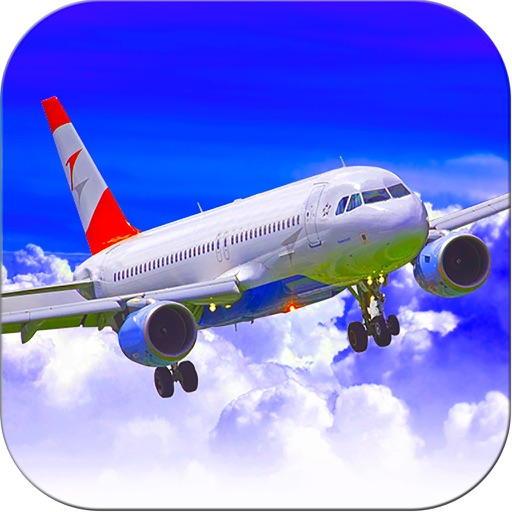 Airplane flight simulator 3