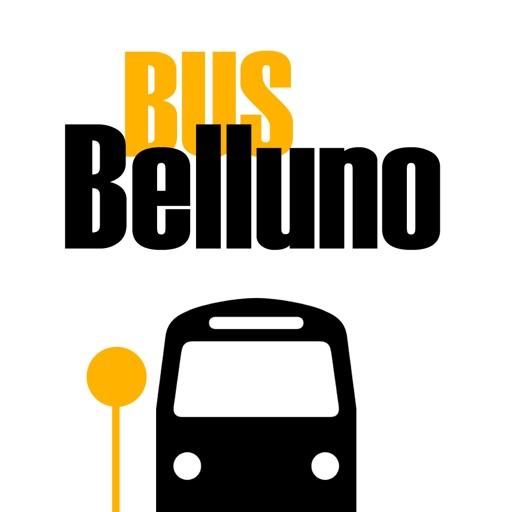Bus Belluno
