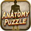 Anatomy Crossword Game Pro Wiki