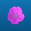download Flower Power Sticker Pack