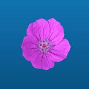 Flower Power Sticker Pack app review