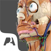 logo de l'application Pocket Anatomy