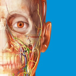 Atlas d'anatomie humaine 2018