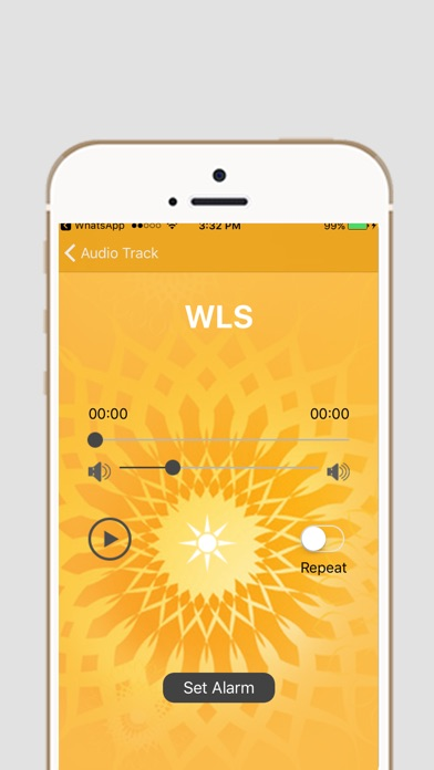 WLS   App Report on Mobile Action
