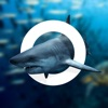 Amazing World OCEAN - Interactive 3D Encyclopedia 앱 아이콘 이미지