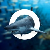 Amazing World OCEAN - Interactive 3D Encyclopedia