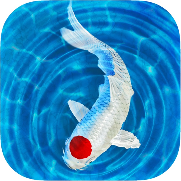 My koi on the app store for Koi pool opening times