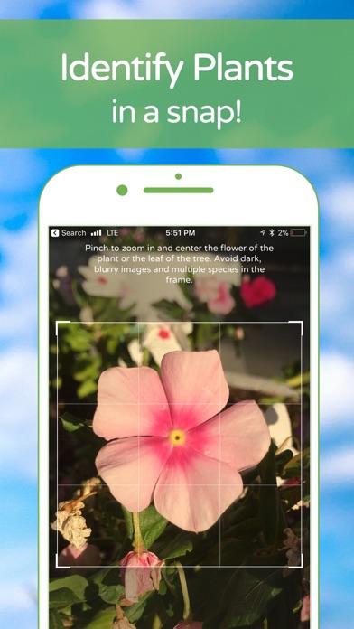 PlantSnap Plant Identification Screenshot 2