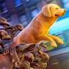 The Walking Dogs: Zombie Apocalypse