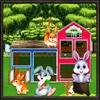 Rabbit House Builder – Pets Home Designer