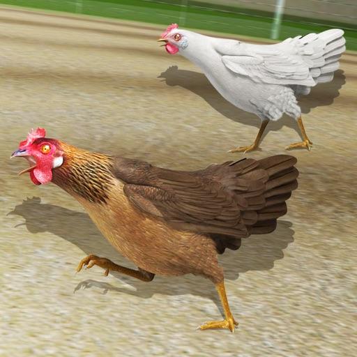 Hen Racing Simulator - Race Free Range Chickens