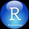 R Programming for Beginners-Software Design
