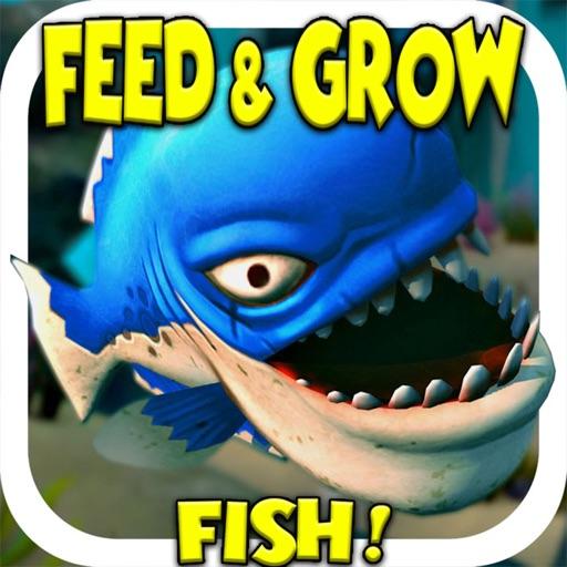 Fish grow battle simulator by mason merrel for Battle fish 2