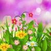 Love Garden Photo Frame