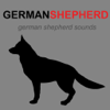 German Shepherd Sounds & Dog Barking Sounds Wiki