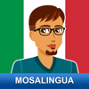 Learn to Speak Italian Fast With MosaLingua
