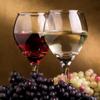 George Mincu - Wine Guide! artwork