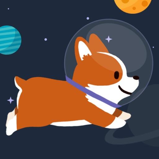 Space Corgi (太空旅行的小狗)