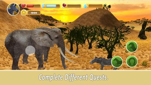 Zebra Family Simulator Full Screenshot