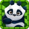 熊猫彩色照 - 大家都在玩 Wiki