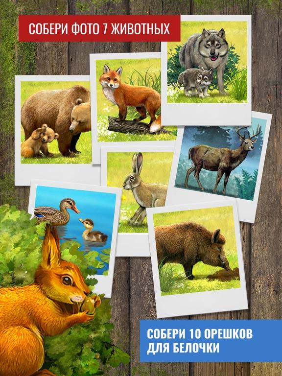 Скачать Приключения в лесу: настольная игра для детей