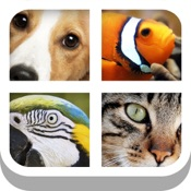 Close Up Animal Quiz   Cat amp Dog Trivia Games Free Hack Resources (Android/iOS) proof
