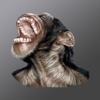 Monkey Head Wiki