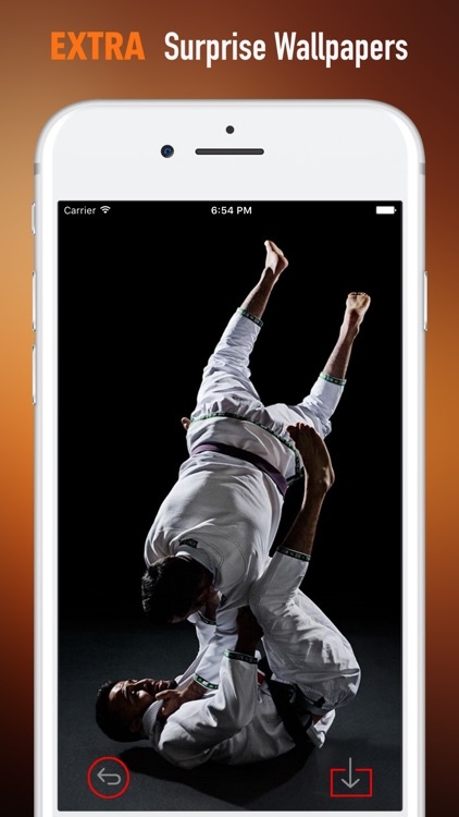 Taekwondo Quotes Pleasing Taekwondo Wallpapers Hdquotes And Art Picturesxi Zhang
