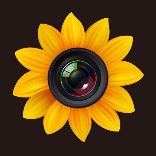 照片管理专业版:Photo Manager Pro