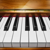 Piano - App to Learn & Play Piano Keyboard Wiki