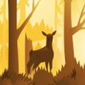 Wildfulness 2 - Relaxing Nature Scenes & Sounds icon