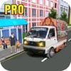 Pickup Van Driver Pro