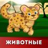Azamat VALEYEV - Мои Первые Буквы: животные artwork